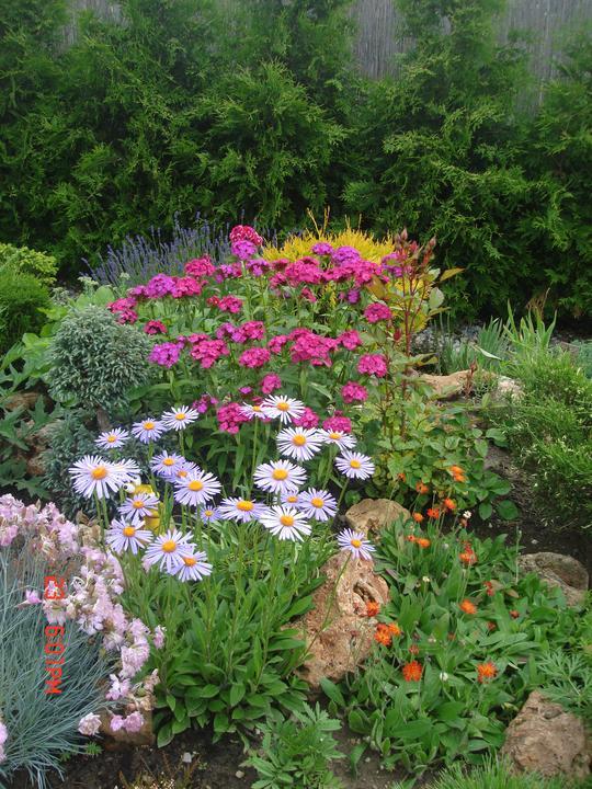 Na dvore a v záhrade - Obrázok č. 55