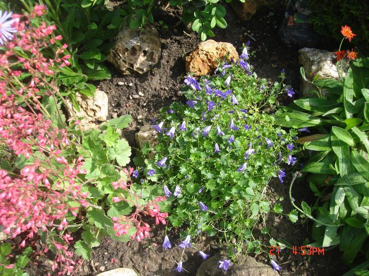 Na dvore a v záhrade - Obrázok č. 58