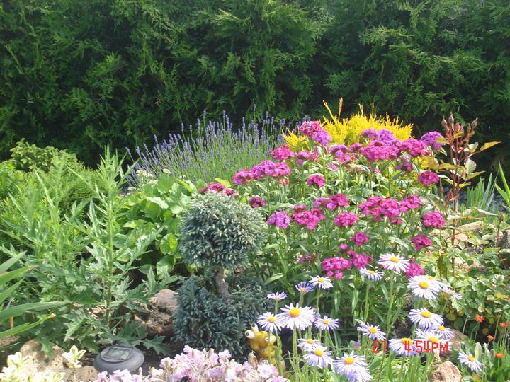 Na dvore a v záhrade - Obrázok č. 60