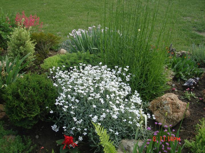 Na dvore a v záhrade - Obrázok č. 63