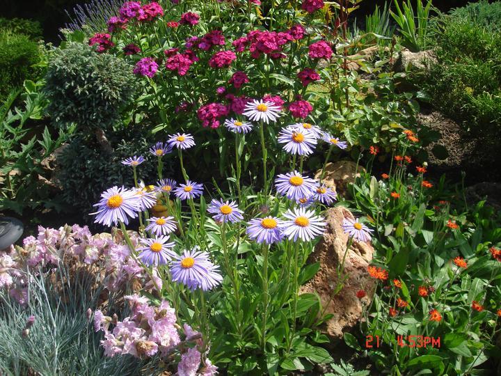 Na dvore a v záhrade - Obrázok č. 84