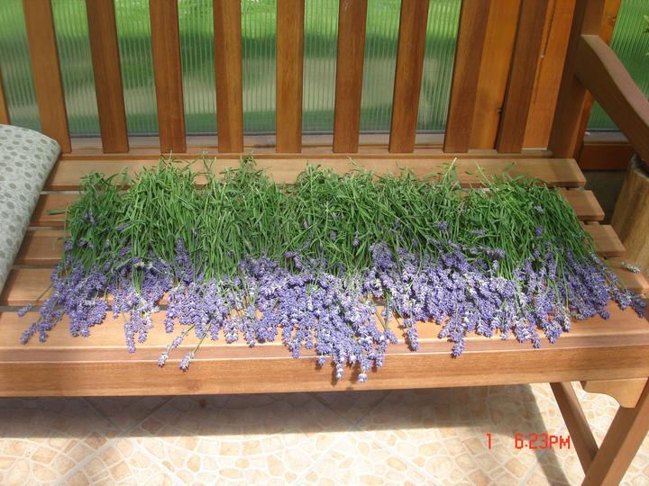 Na dvore a v záhrade - Obrázok č. 92