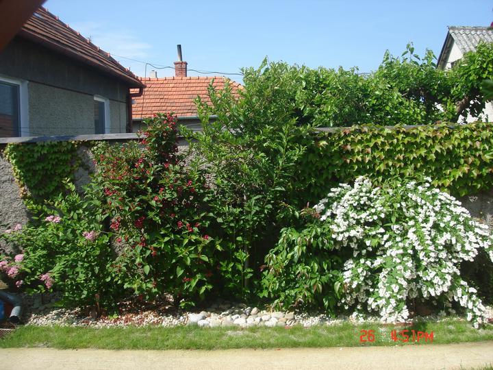 Na dvore a v záhrade - Obrázok č. 86