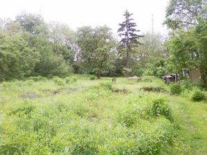 Kveten 2010 - posekano (zaplevelena plocha v popredi je budouci pudorys...)