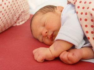 Ríšulka se narodil 7. dubna 2011