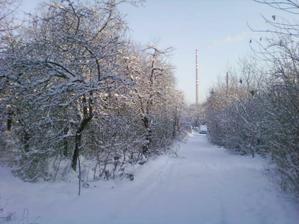 Prijezdova cesta podruhe (pohled z ulice k domecku)