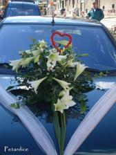 Nádhera, jen taťka viděl víc kytky než silnice...ti řidiči si pořád na něco stěžují :)