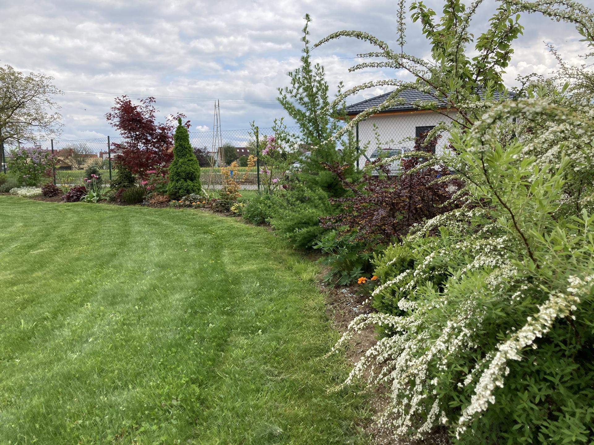 Šestý rok zahradničím - Obrázek č. 21