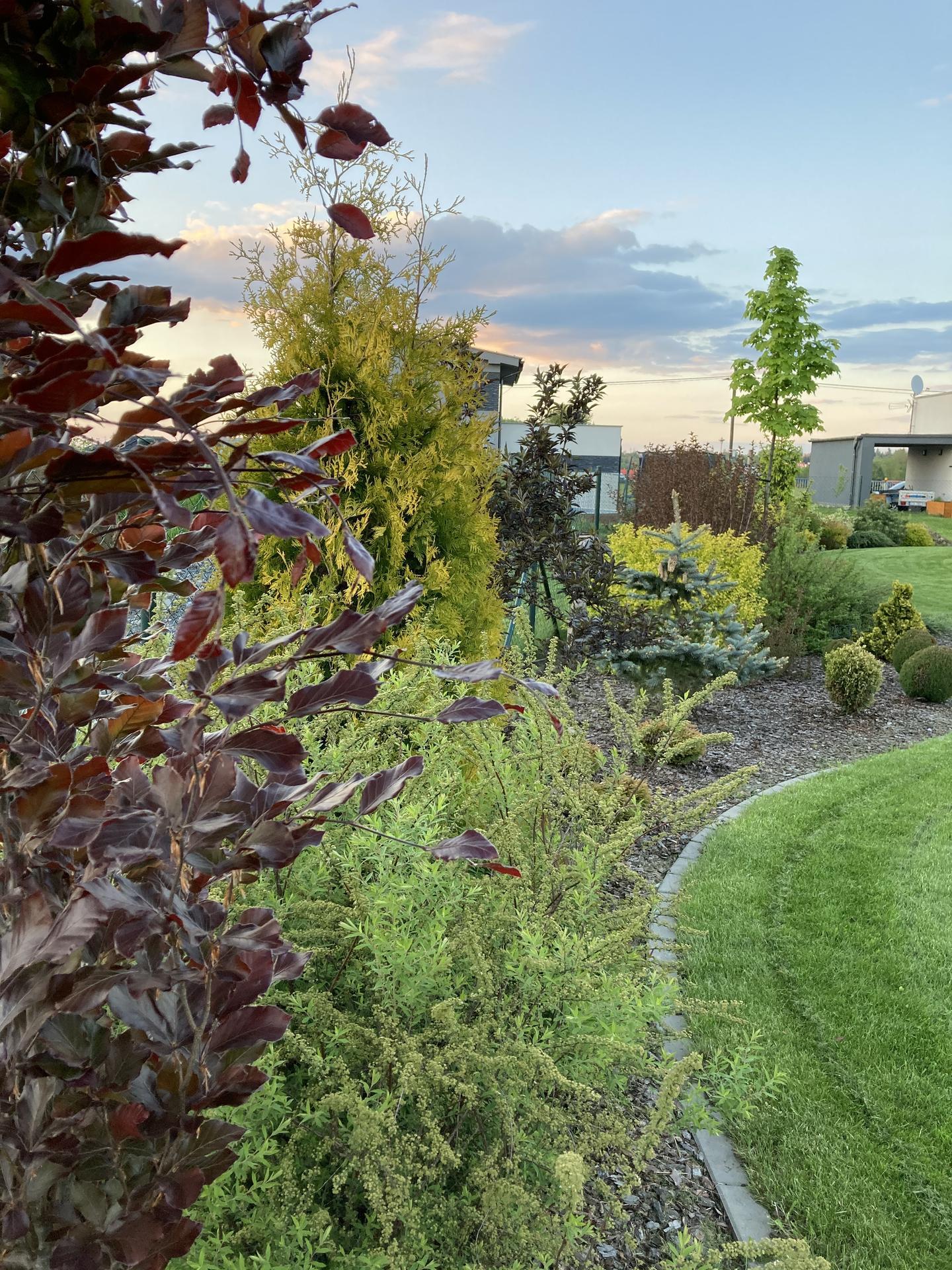 Šestý rok zahradničím - Obrázek č. 25