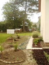 9.6.2012 vlevo trávy , pierisy, pěnišníky, hortenzie, javor..... a jednou bude plot :-)