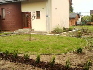 9.6.2012 vzešla travička, zasadili jsme živý plot, sakuru, kopretinu, denivky, zvonek, dál mezi domy jsou 2 pěnišníky, azalka, hortenzie latnatá, javor,2 pierisy a trávy(úplně na konci-vzadu)