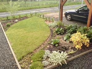 konečně se povedlo doupravovat- dosazený živý plot a zvětšený záhon s bergeniemi, srdcovkou, hortenziemi atd.