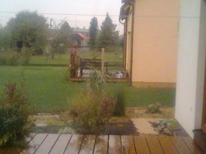 pohled přes borůvky a trávu k sousedům na terasu říjen 2012