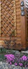 tři erby mých malých rytířů a rytířky :-) z loňského rytířského tábora