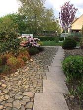 Záhon s rododendrony, pierisy, vřesy, konvalinkami.....severovýchodní strana domu