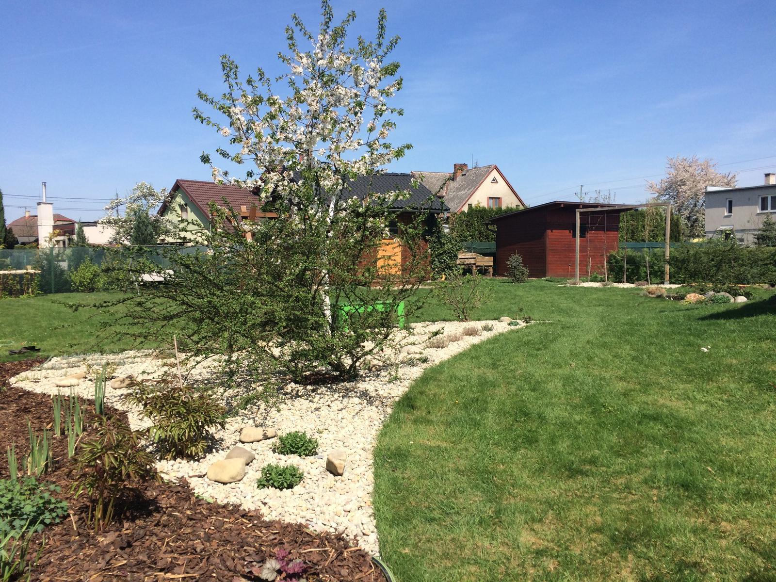 Zahrada 2018 - no nevím jestli to nezasypu kamením všechno, nějak zvlášť se mi nelíbí kombinování mulče a kačírku, ale zároveň tady potřebuju navázat na už zamulčovaný dlouhý záhon podél plotu
