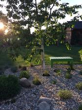 Zahrada večer