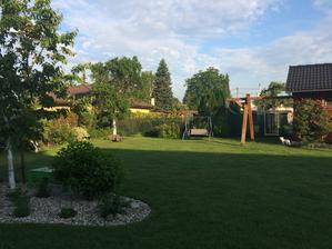 dnes po ránu s kafem v ruce obchůzka zahrady