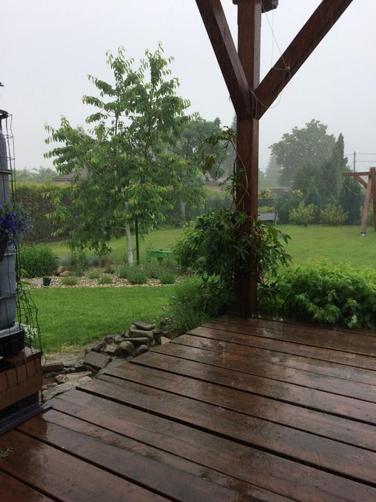 ...vytáhla jsem truhlíky z pod střechy a měla radost....od noci bouřky a provazy vody ...