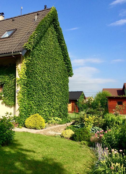 Dům má mimikry a mizí v zahradě 😀