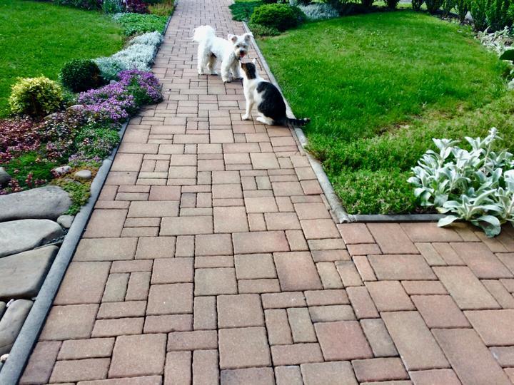 Dvojka, co patří do zahrady