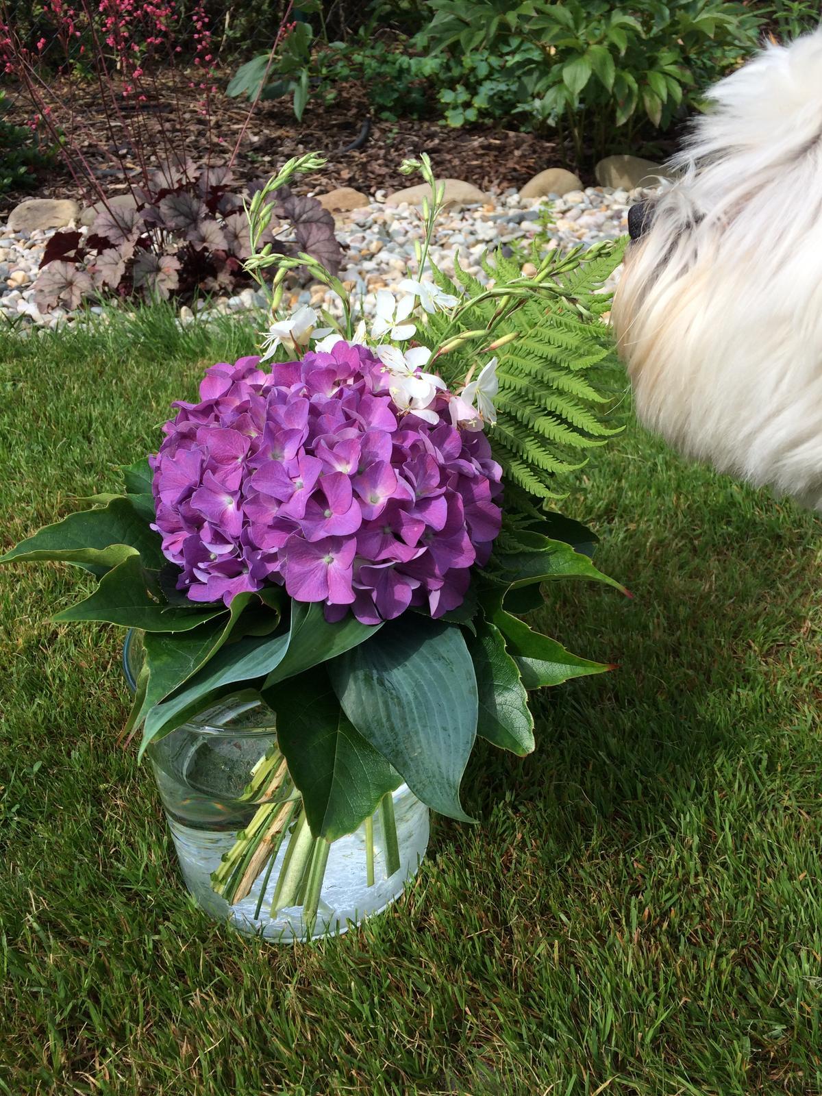 Dekorace z květin Pro radost - Všecko ze zahrady i ten pes😉