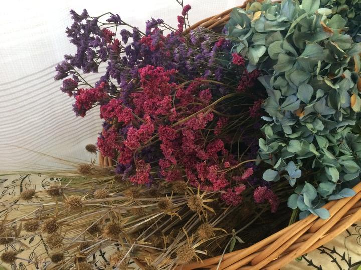 Sušené květiny ... kupovaná statice, vypěstované hortenzie a máčka, nasbírané obilí