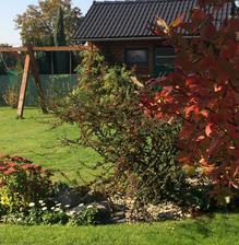 Nejen podzim vylepšuje barvy... zahradní domek taky má novou barvu dveří a okna (konečně)