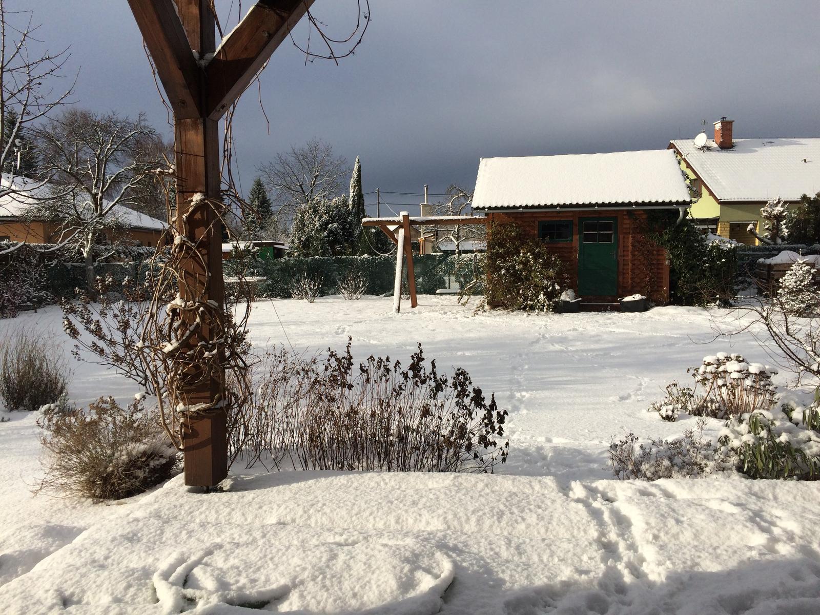 Dům i Zahrada 2019 - Obrázek č. 4