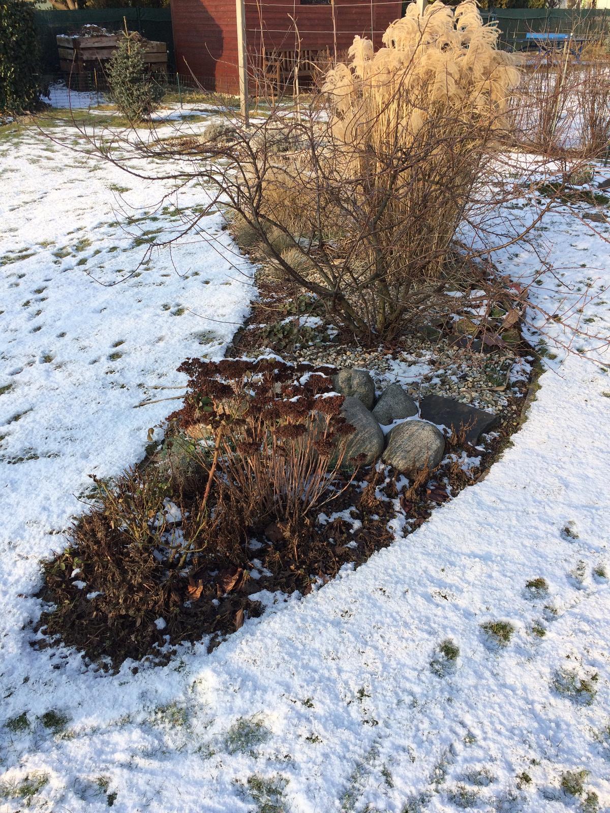 Dům i Zahrada 2019 - Obrázek č. 6