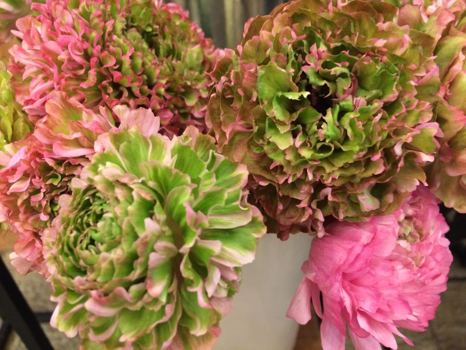 Dekorace z květin Pro radost - Pryskyřníky/ Ranunculus
