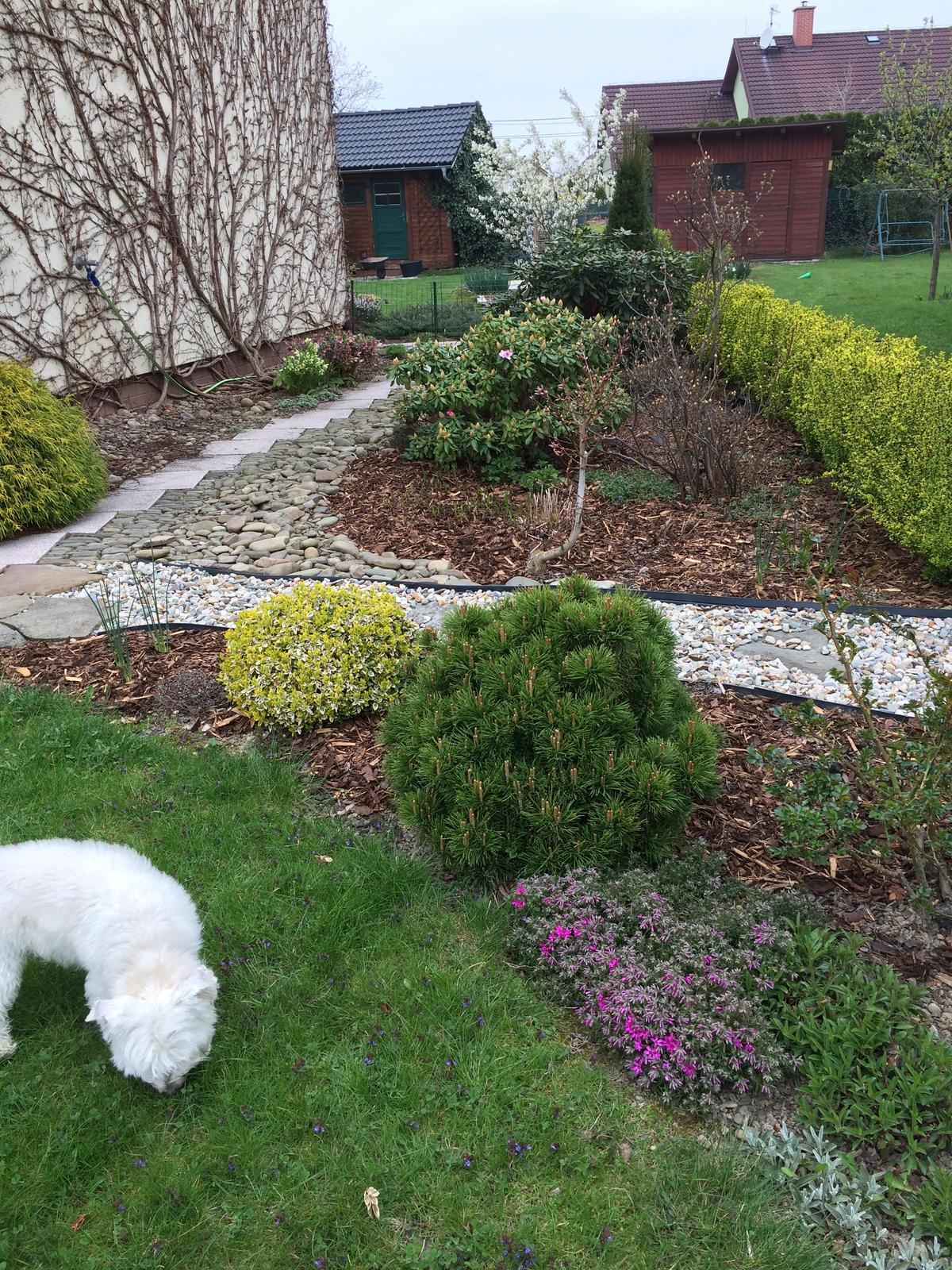 Dům i Zahrada 2019 - Obrázek č. 102