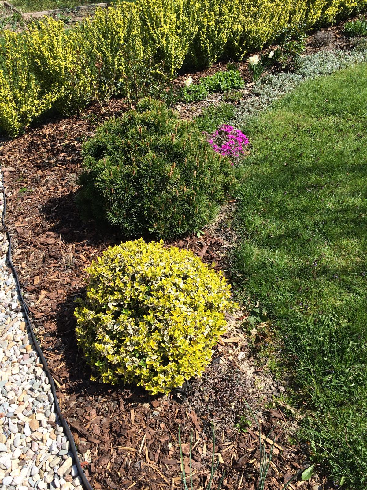 Dům i Zahrada 2019 - Obrázek č. 121