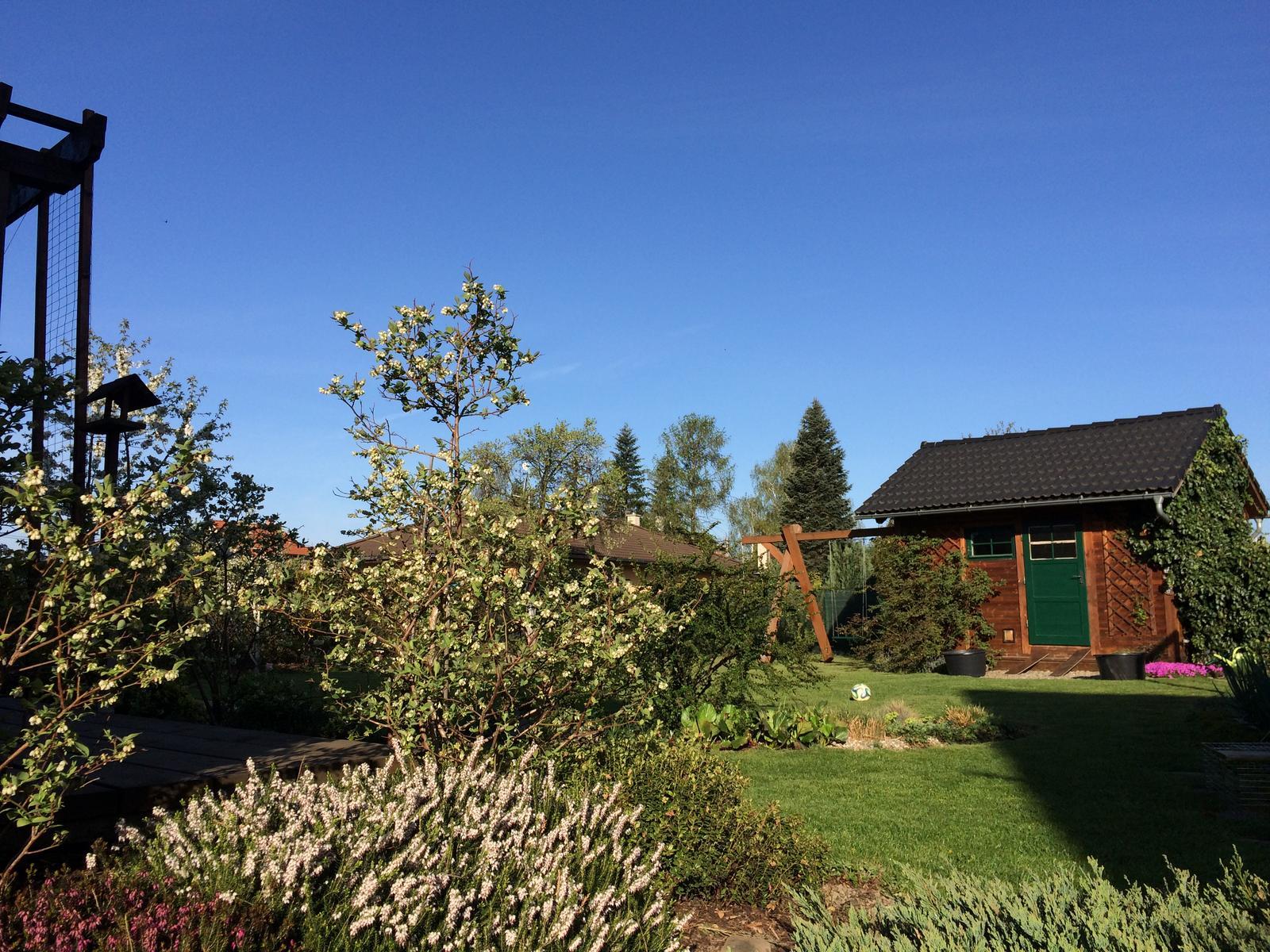 Dům i Zahrada 2019 - Obrázek č. 173
