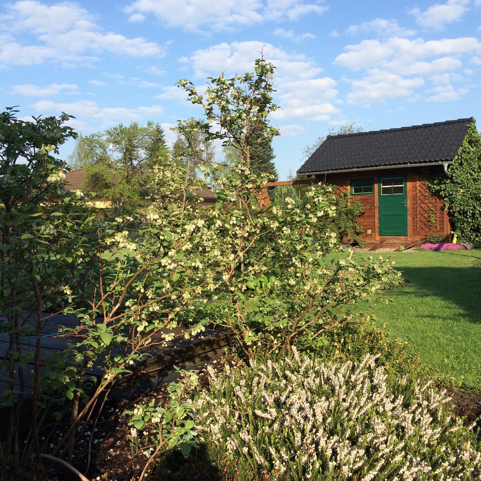 Dům i Zahrada 2019 - Obrázek č. 174