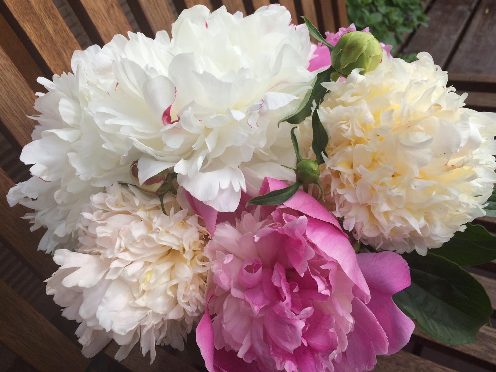 Dekorace z květin Pro radost - Pivoňky bílá smetanová a růžová