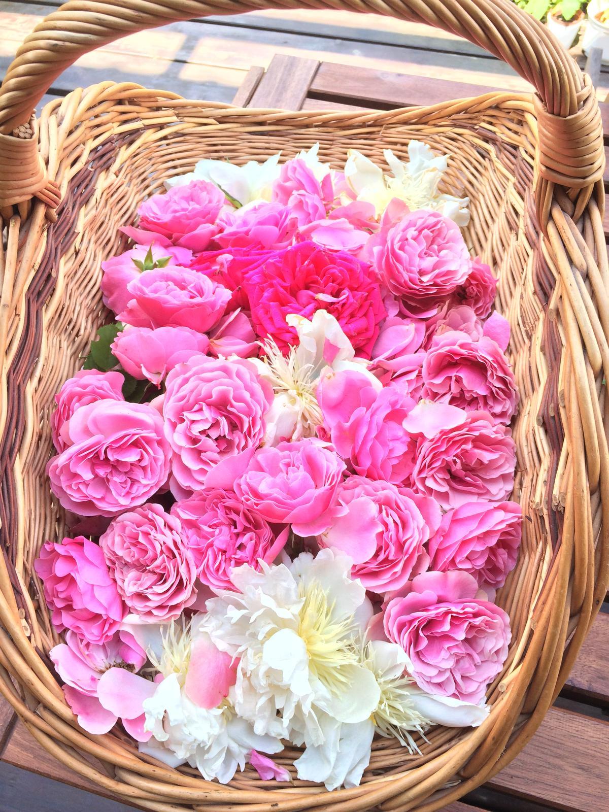 Dekorace z květin Pro radost - ...... okvětní lístky na zítřejší slavnost Božího Těla