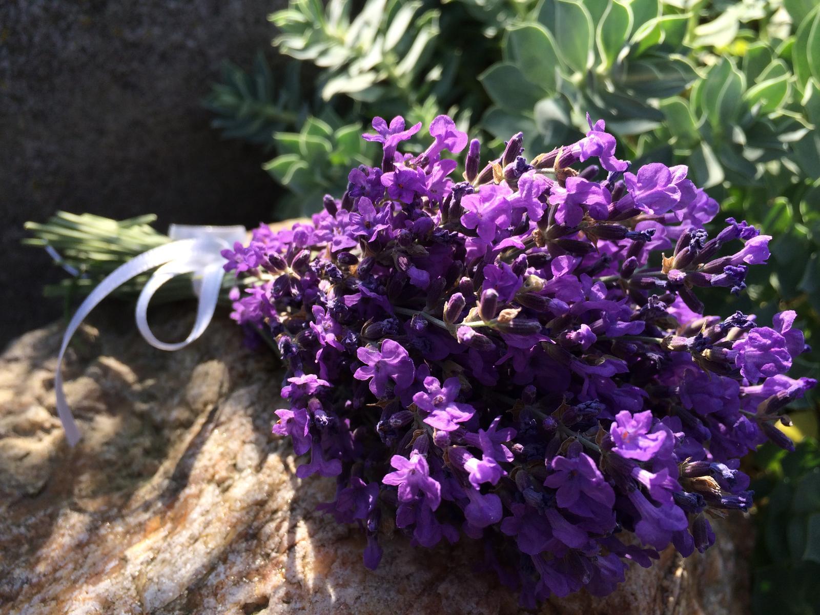 Dekorace z květin Pro radost - prostě jen levandule