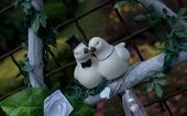 Svatební dekorace s holibičkami,