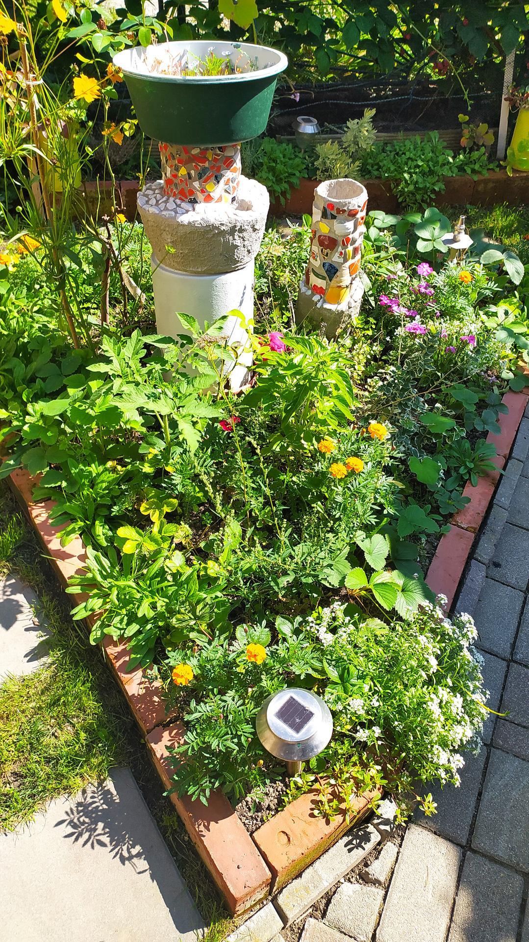 Moja záhradka,moja radosť,relax.