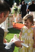 Holubice na svadbe - detsky kutik pocas obradu