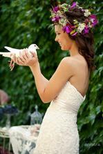 Biele holuby v Nitre