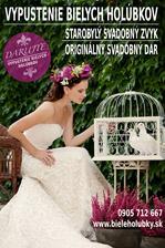Biele holubice na svadbu  - svadobny dar