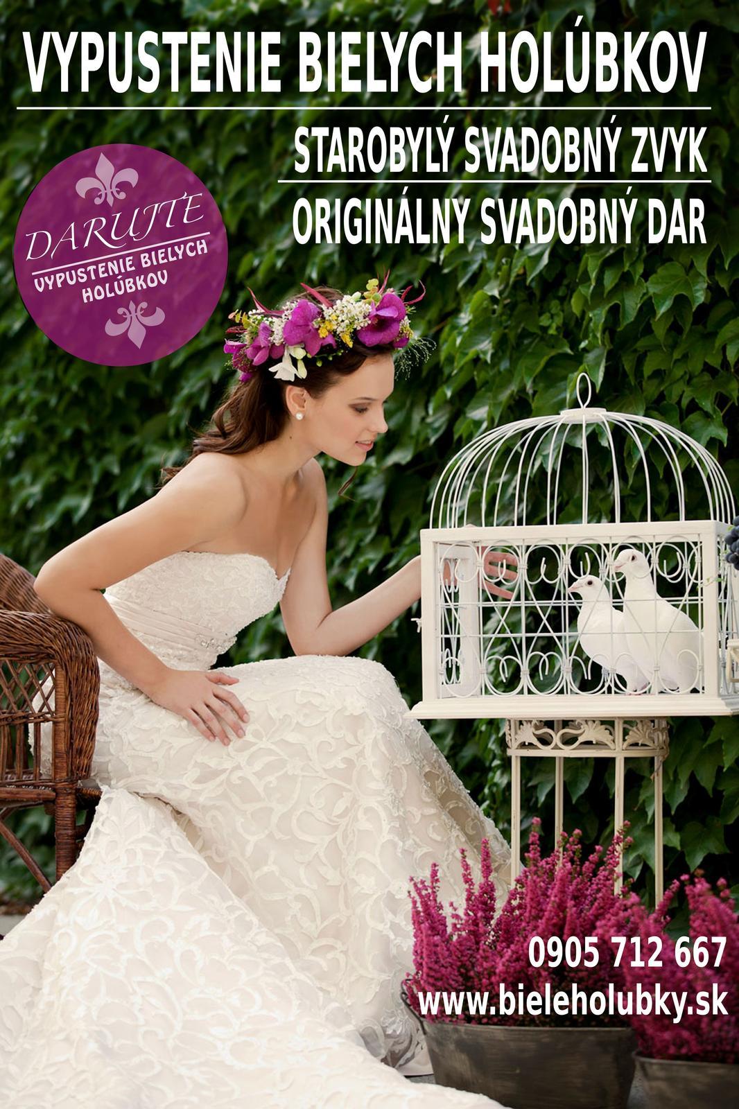 Svadobné holubice - Biele holubice na svadbu  - svadobny dar