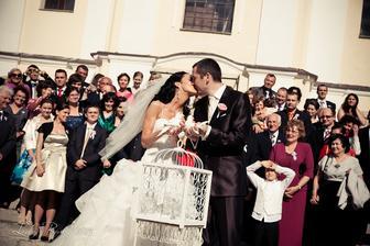 Bozk pred vypustenim svadobnych holubkov, Oponice