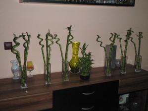 kúpené vázy s bambusmi do sály