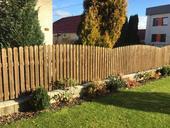 Dreveny plot,