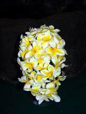 Dostala jsem na vyber z nasledujicich kvetin .... zatim vedou frangipani :-)