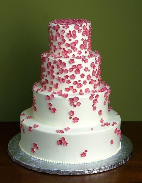 """Zachvíľu to začne:) - Už je dohodnuté s našou """"dvornou cukrárkou"""",táto torta  bude na hlavnom stole:)"""