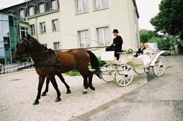 Hotel Kamila - Svadobný kočiar